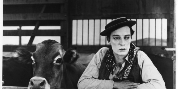 Io e la vacca | Vorrei essere una mucca